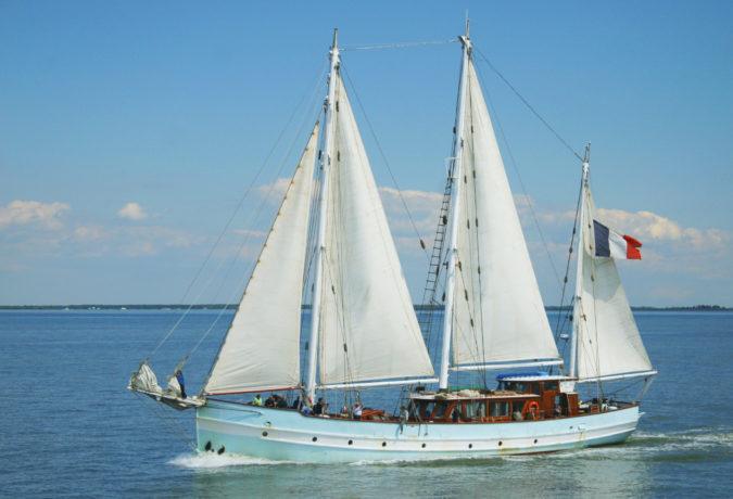 De licht blauwe zeilboot Rara Avis vaart door het water